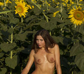 Rimma A - The Sunflower - Erotic Beauty 7