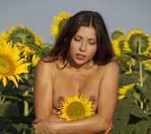 Rimma A - The Sunflower - Erotic Beauty 10