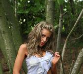 Woodland Wildlife - Love Amateur 2