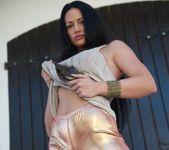 Tori W - Tori Gold Leggings - Skin Tight Glamour 4