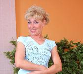 Susan Lee - Stockings - Anilos 3