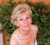 Susan Lee - Stockings - Anilos 6