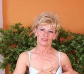 Susan Lee - Stockings - Anilos 8