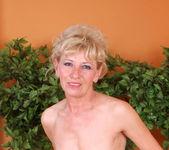 Susan Lee - Stockings - Anilos 11
