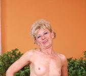 Susan Lee - Stockings - Anilos 12