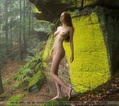 Nebelwald - Anna-leah 4