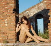 Timeless - Elle - Femjoy 5