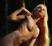 Woodworks - Desiree - Femjoy 2