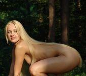 Woodworks - Desiree - Femjoy 3