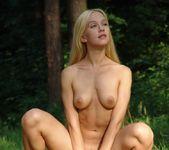 Woodworks - Desiree - Femjoy 16