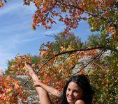 Autumn Spirit - Armida 5