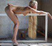 Framed Beauty - Desiree 15