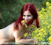 Like Fire - Ariel - Femjoy 4