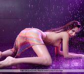 Purple Rain - Martina D. 5