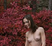 Sweet November - Valya 2