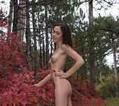 Sweet November - Valya 5