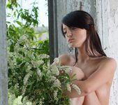 Jasmine - Lin - Femjoy 9