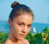 The Wine Expert - Natalia E. 3