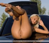 Car For Sale - Anju - Femjoy 15