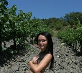 Vineyard - Olivia - Femjoy 9