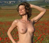 Poppies - Abby - Femjoy 3