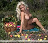Enchanted Apples - Marylin 2