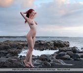 Captain - Ariel - Femjoy 3