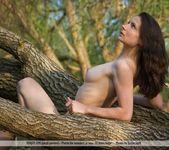 Amazone - Nicolette - Femjoy 7