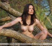 Amazone - Nicolette - Femjoy 8