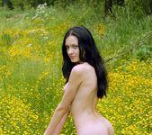 Yellow Fever - Antonia 7