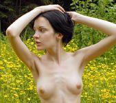 Yellow Fever - Antonia 12