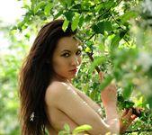 A Good Gardener - Martina D. 5