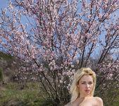 Almond Blossom - Tinna 5