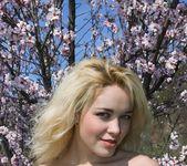 Almond Blossom - Tinna 14