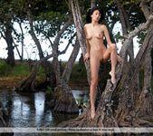 Exotic - Luna - Femjoy 5