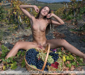 Here In My Vineyard - Lena 2