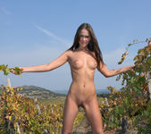 Here In My Vineyard - Lena 3
