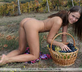Here In My Vineyard - Lena 7