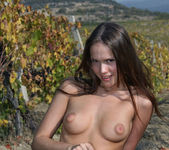 Here In My Vineyard - Lena 16