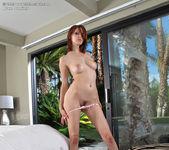 Bree Daniels - InTheCrack 7