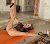 Malena Morgan - InTheCrack 10