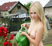 Farmer's Wife - Whitney 14