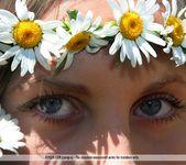 Daisies - Merit - Femjoy 16
