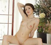Selena Stuart - 21 Sextury 11