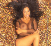 Nina Mercedez Animal Instinct 12