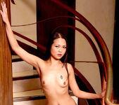 Kaiya Lynn - Memoirs of a Modern Day Geisha 8