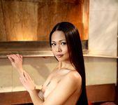 Kaiya Lynn - Memoirs of a Modern Day Geisha 11