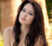 Natasha Belle - Black & Blue 12