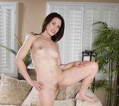 Sarah Shevon - Hairy Pussy Play 17