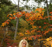 Autumn Forest - Adelia B. 4